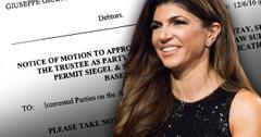 Teresa Giudice Bankruptcy Settled Closed Again