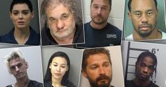 Celebrity Arrests 2017