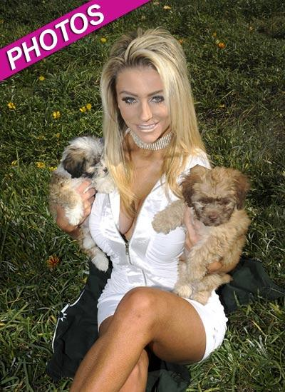 //courtney stodden dogs charity photos