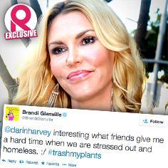 //brandi glanville moving homeless twitter sq