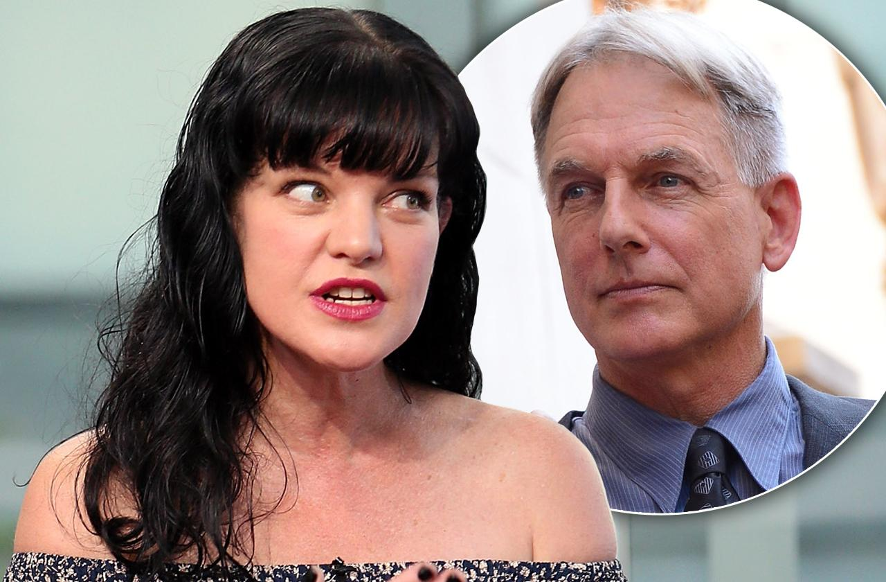 pauley perrette quit ncis mark harmon pitbull