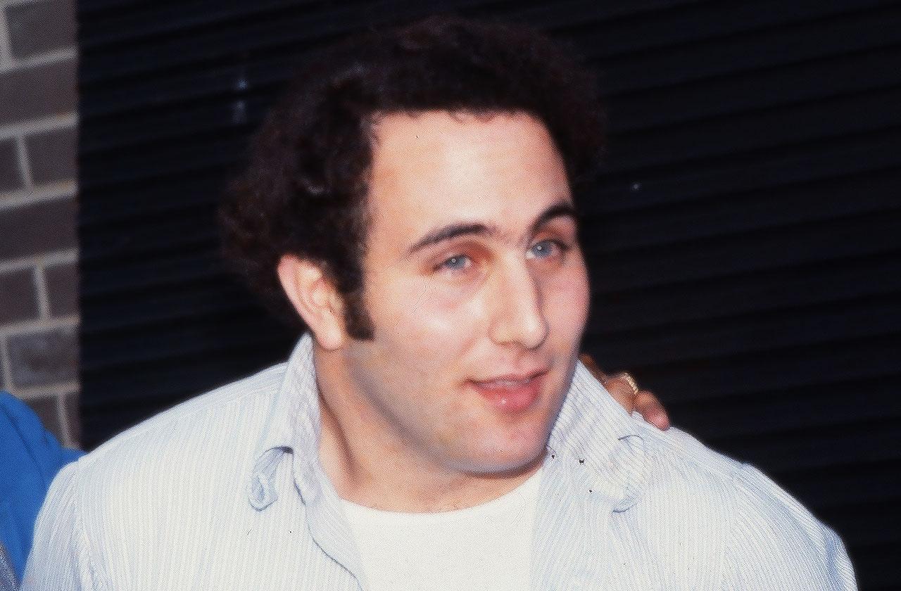 //son sam david berkowitz victim pp