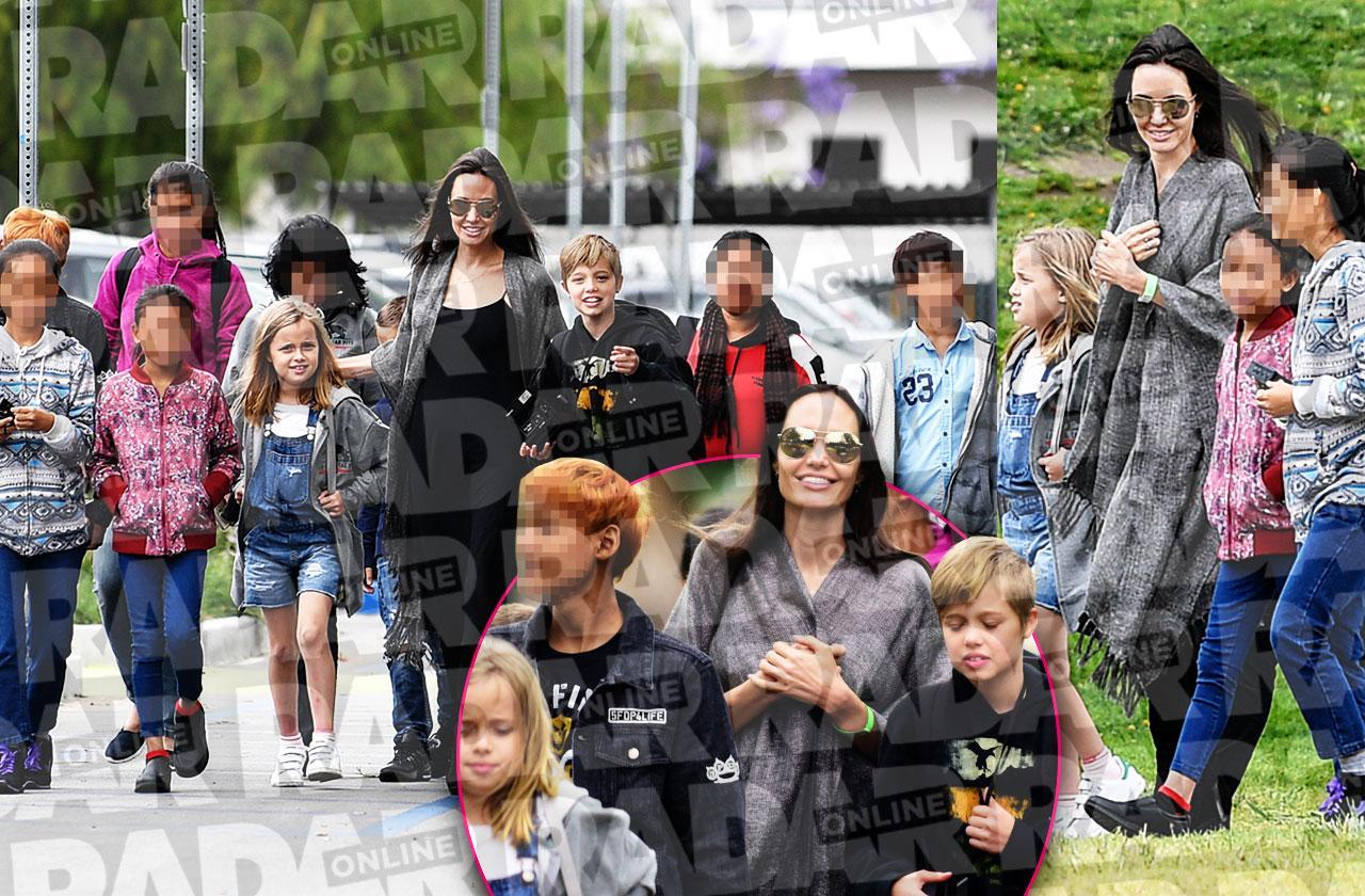 Angelina Jolie Divorce Kids Adopting