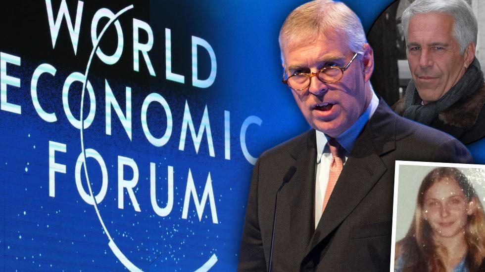 Prince Andrew World Economic Forum
