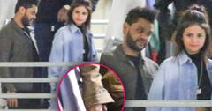 //selena gomez the weeknd dating holding hands pp