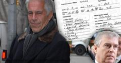 Royal Sex Scandal Prince Andrew Flight Logs