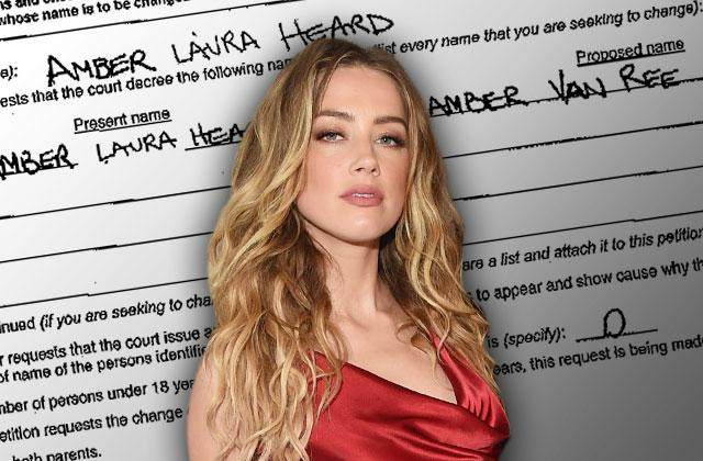 //amber heard domestic partnership tasya van ree