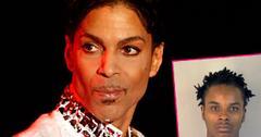 Prince Dead Secret Love Child DNA Procedure Objection