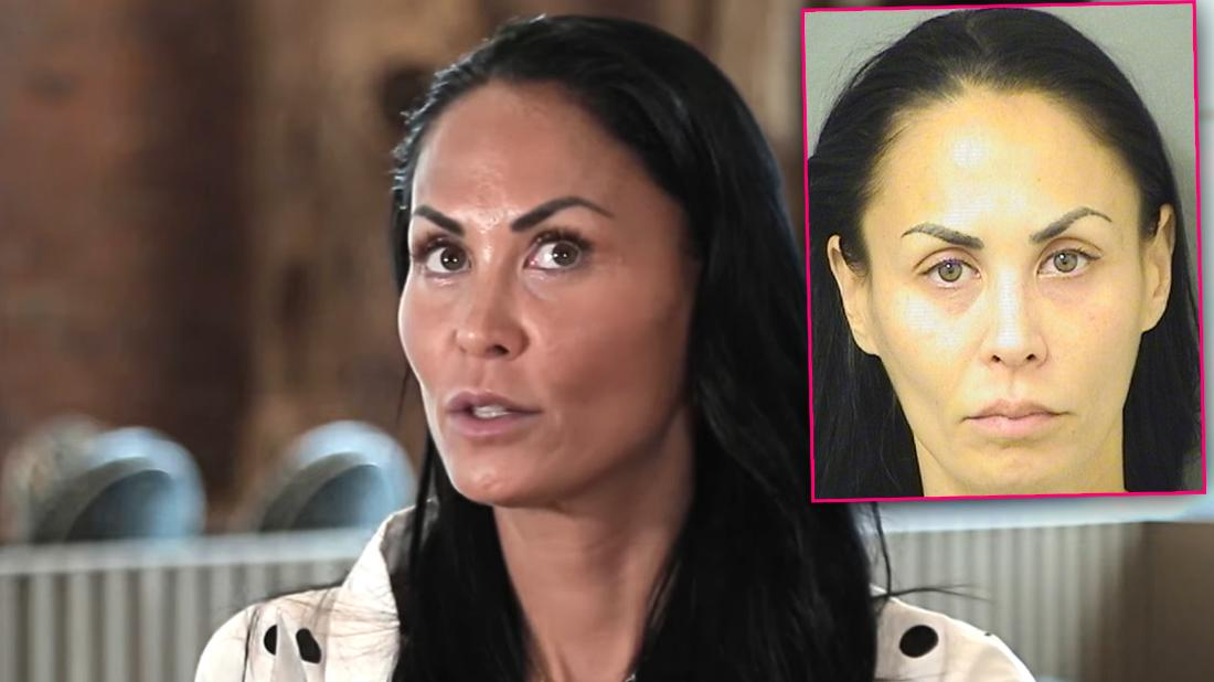 Former RHONY star Jules Wainstein is arrested for battery in Florida amid ongoing divorce battle