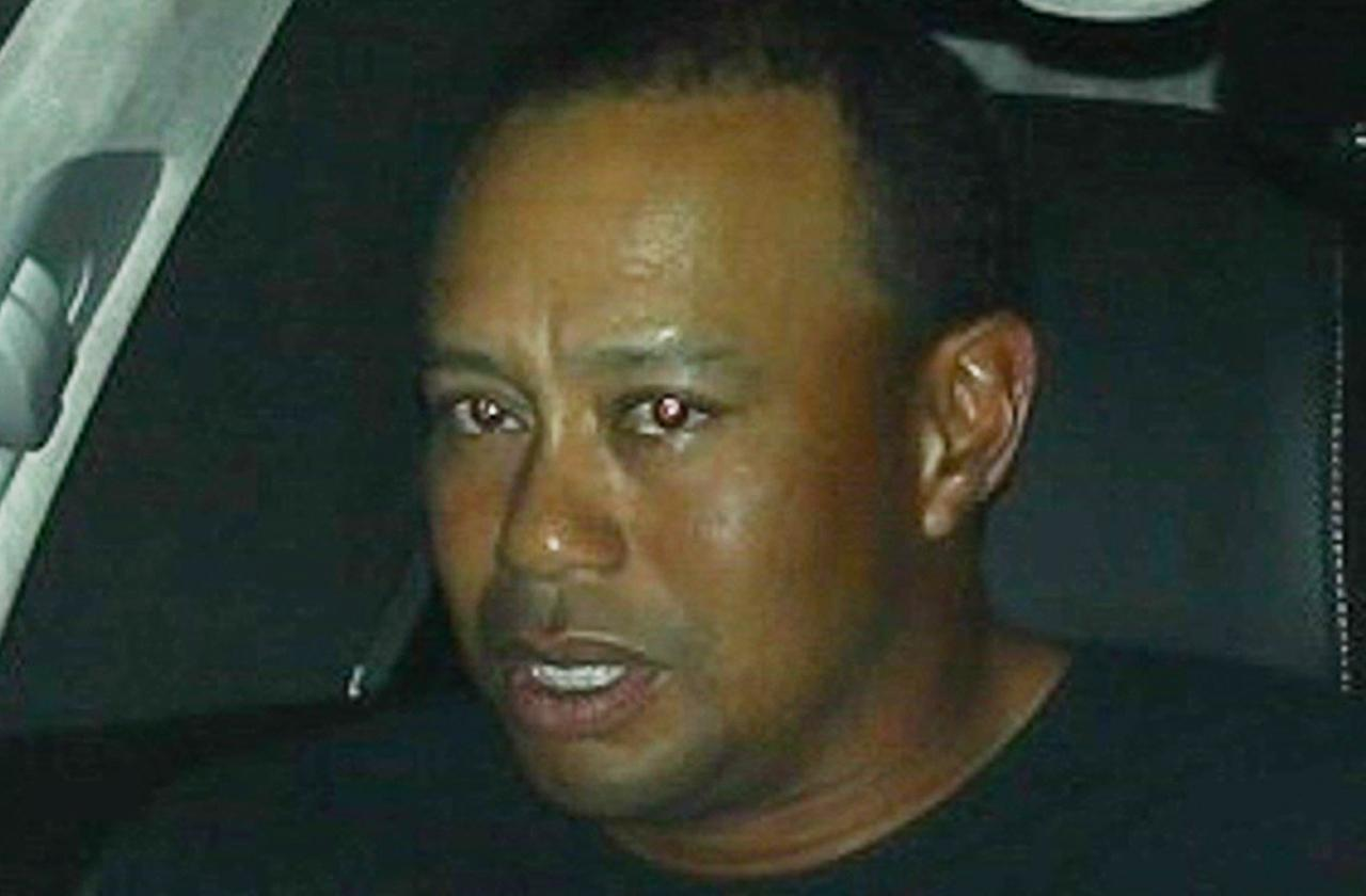 //Tiger Woods Rehab Diaries Exposed New Book pp