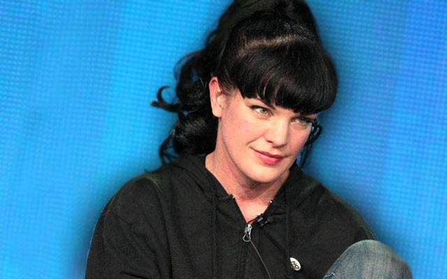 //Pauley Perrette Alleged Attacker Back In Court Next Year pp