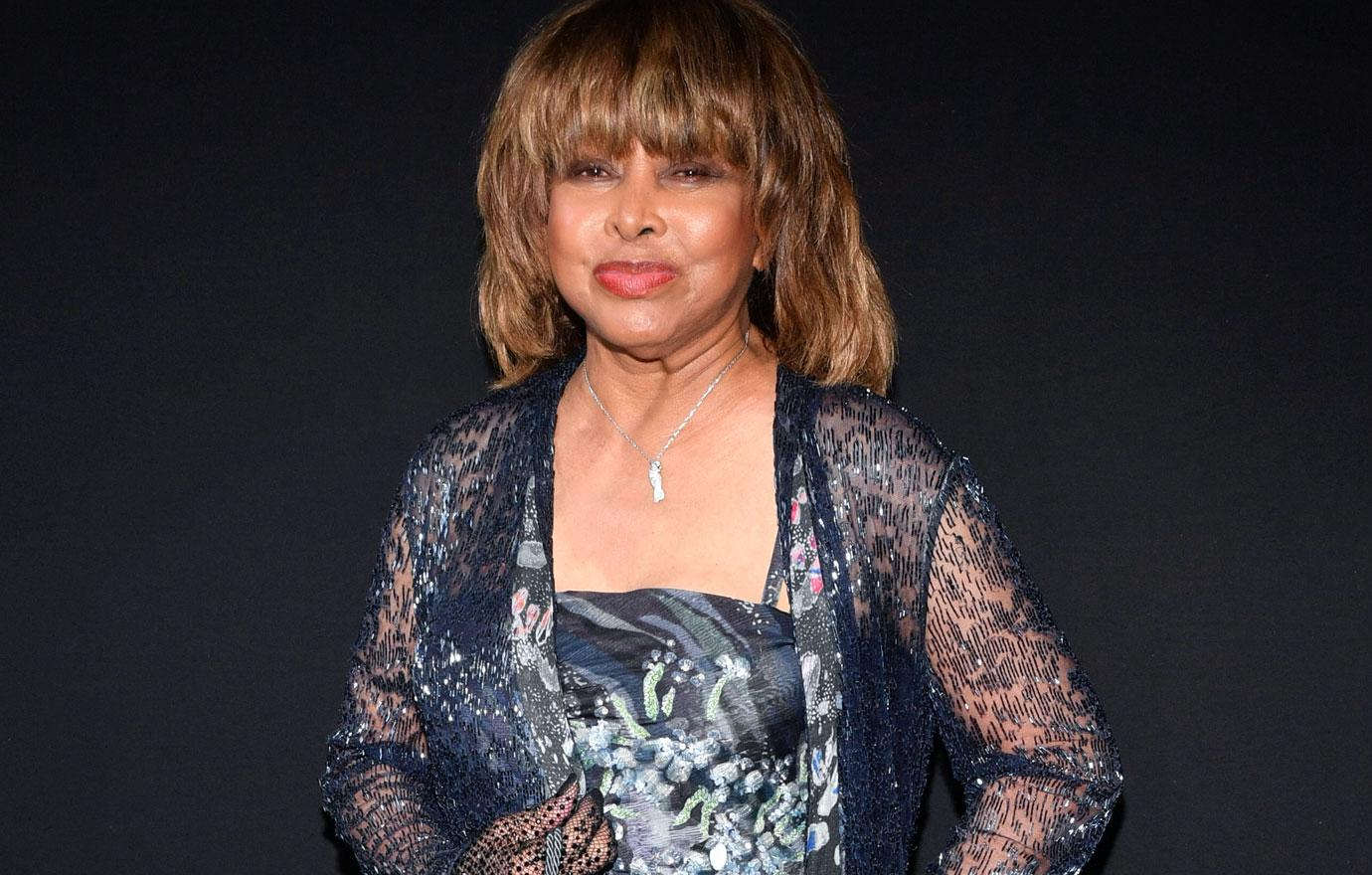 //tina turner talks about son's suicide pp