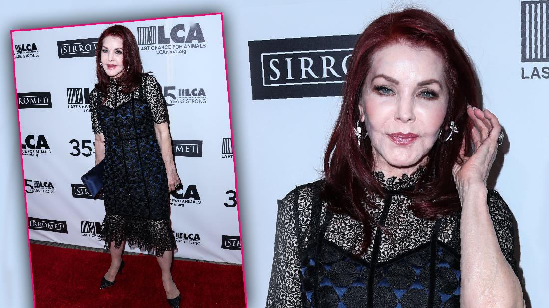 Priscilla Presley Attends Animal Charity After Horse Dies