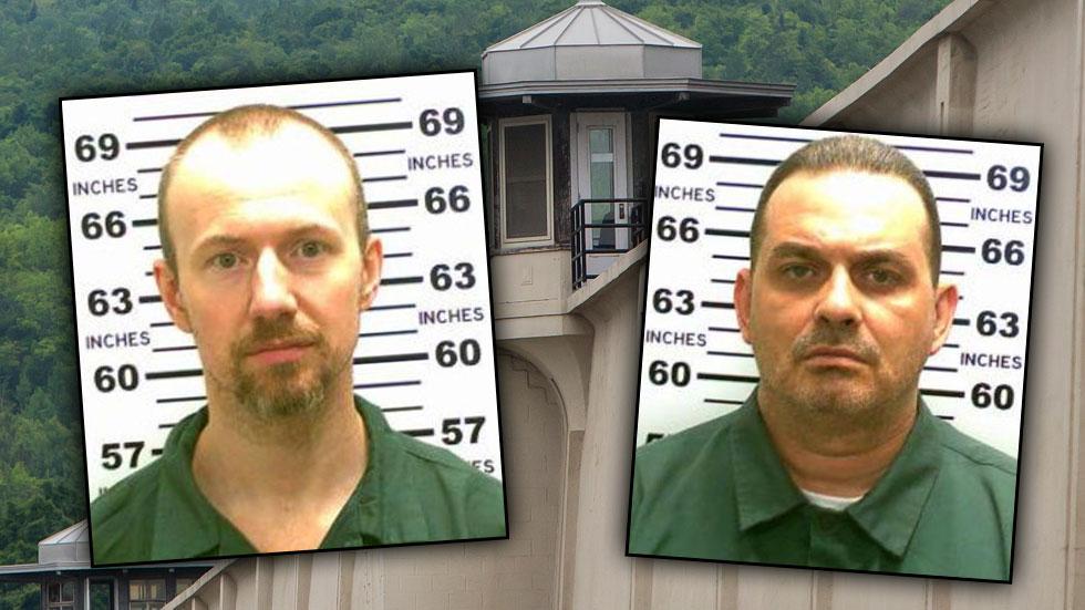 Prison Break New York DNA