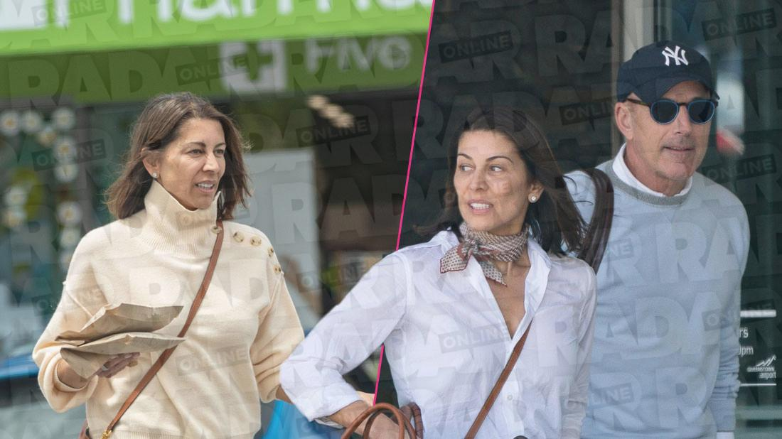 Five Things To Know About Matt Lauer New GF Shamin Abas
