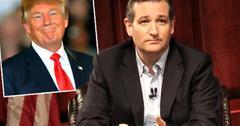 Ted Cruz Admits Presidential Defeat Donald Trump