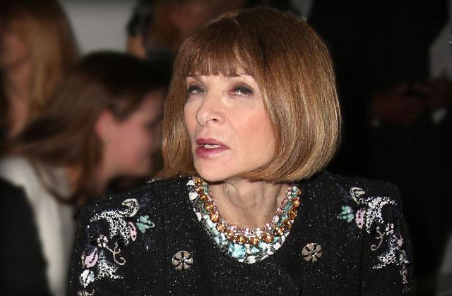 //anna wintour met gala photos deleted pp