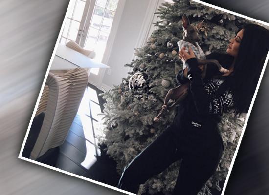 Kylie Jenner Christmas Décor