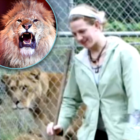 //intern killed lion