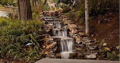 //sharon stone_waterfall x
